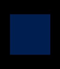 LogoVWnew